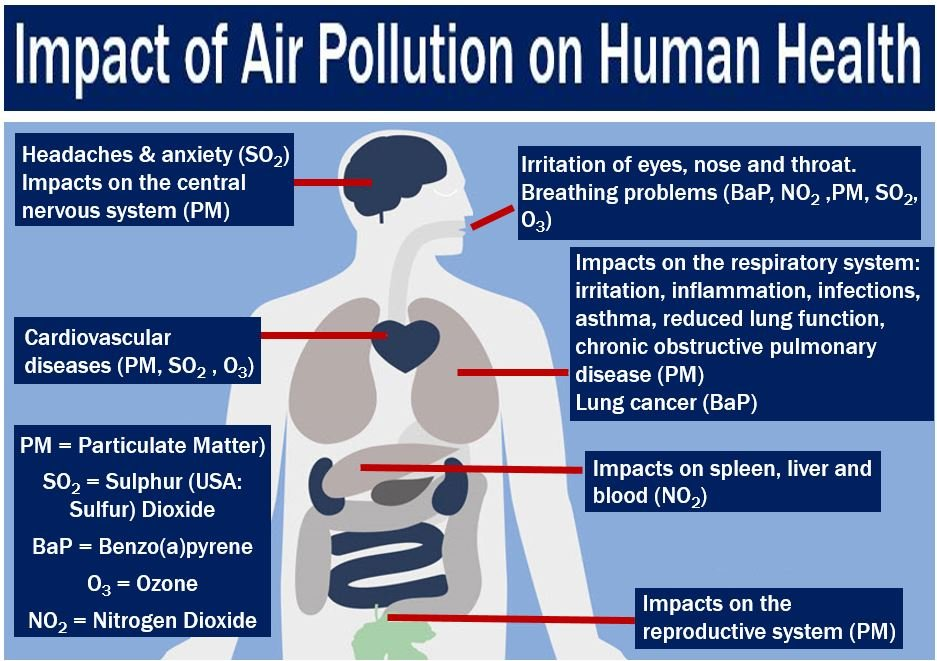 effects of noise pollution on human health pdf