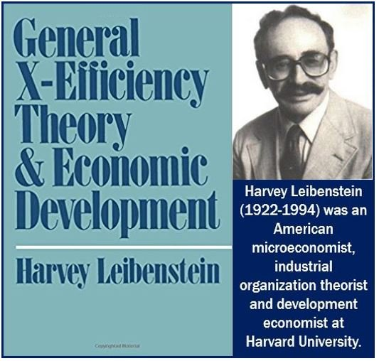Harbey Leibenstein and X-Efficiency