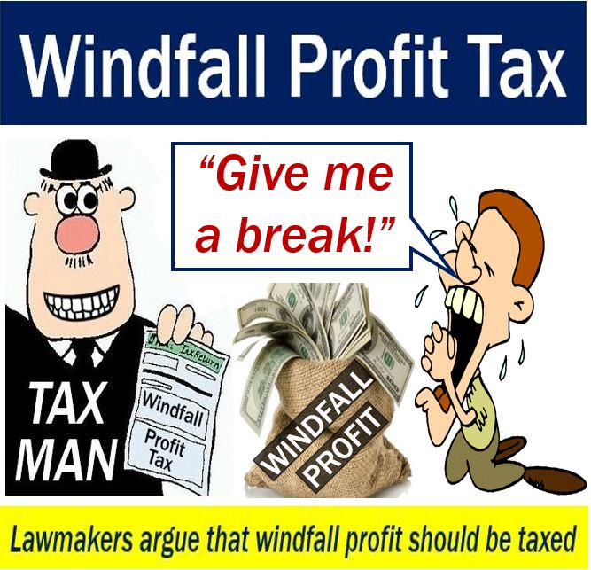 Windfall profit tax and lawmakers