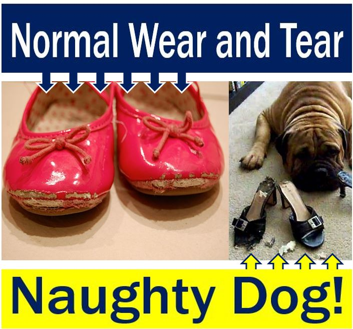 Normal wear and tear - naughty dog