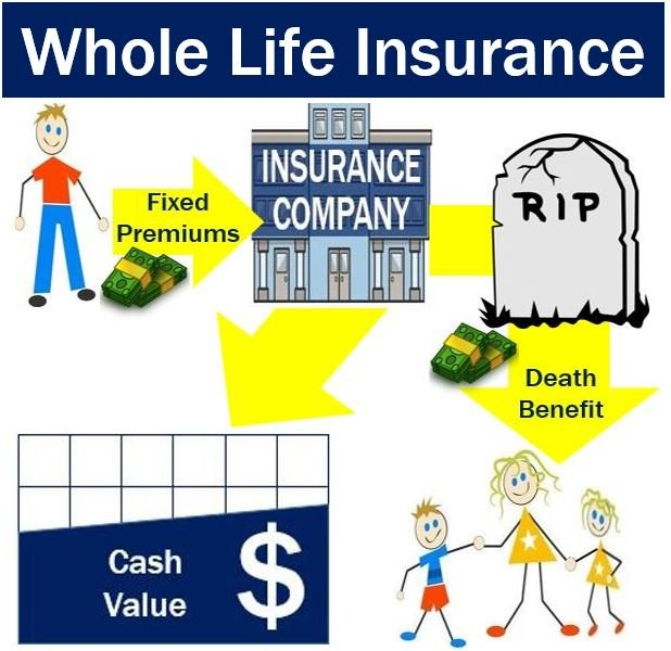 Whole Term Life Insurance Quotes: Life Insurance Plans And Policies In India By Max Life