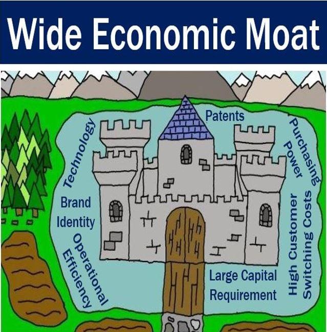 Wide economic moat