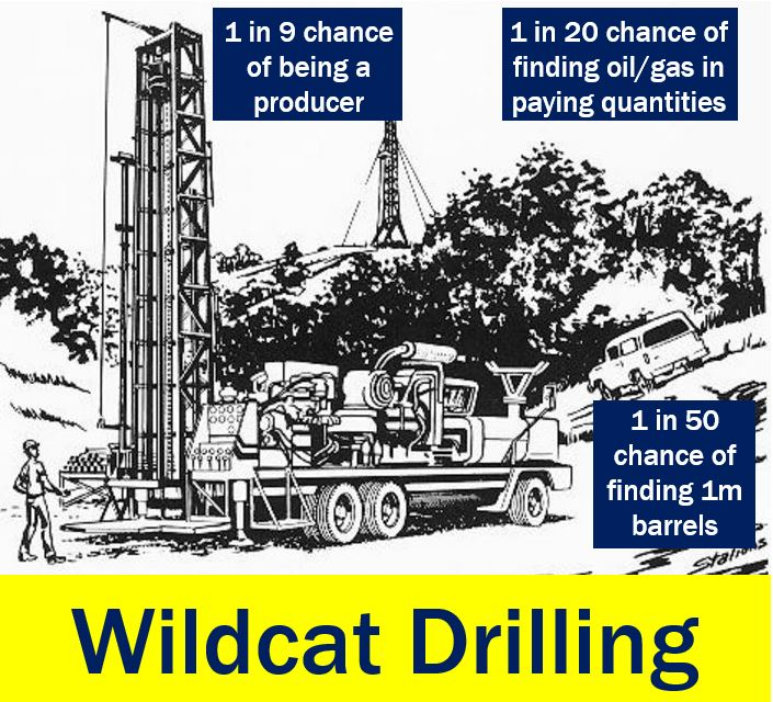 Wildcat drilling - chances of striking it rich
