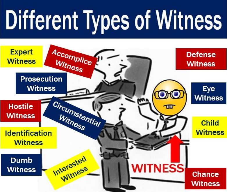 Witness types in court