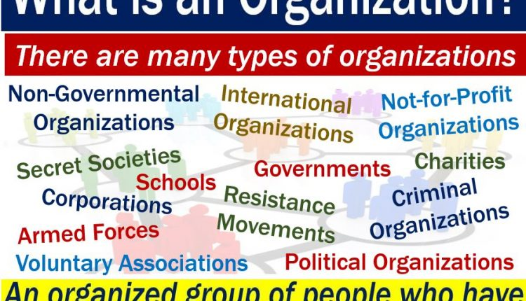 Organization - image with definition and examples