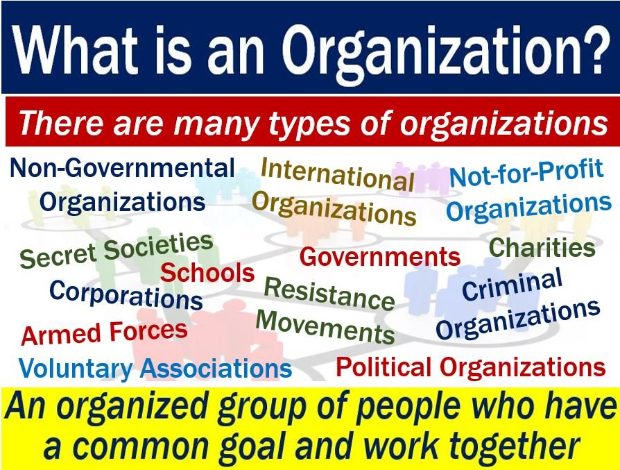Organization Definition And Meaning Market Business News