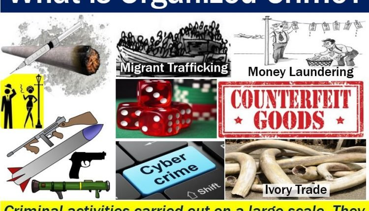 Organized Crime - image with definition and examples