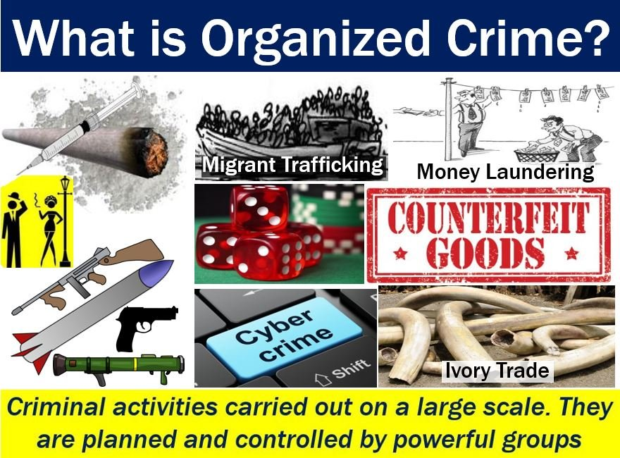 perceptions of organized crime groups Personal perception of organized crime organized crime constitutes various illegal activities pursued by a highly disciplined and organized group or.