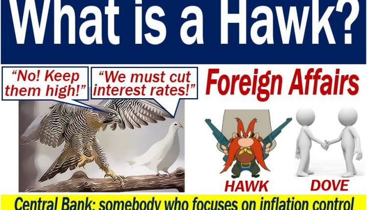 Hawk - definition and meaning of dove