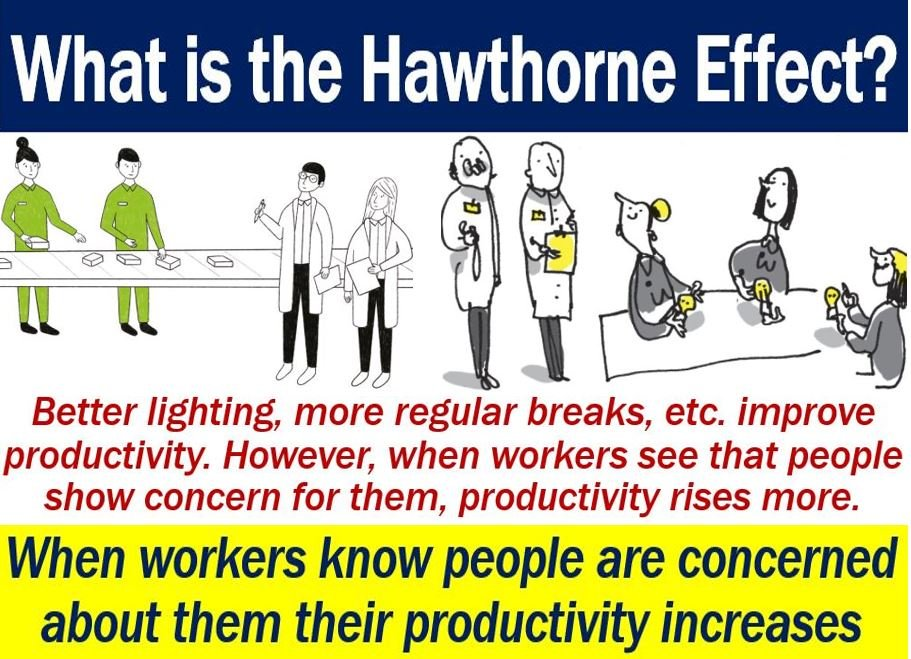 Nice Hawthorne Effect   Definition And Images