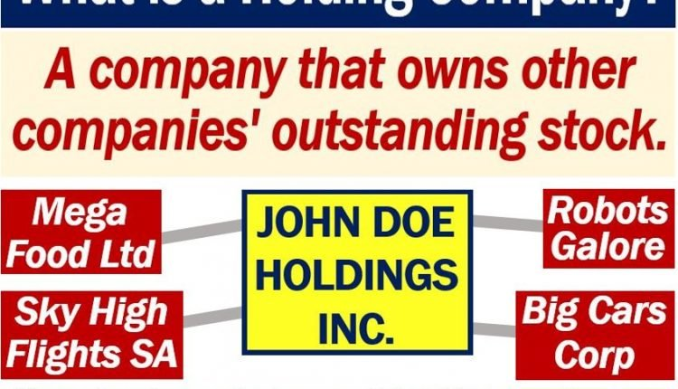 Holding Company - definition and examples