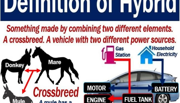 Hybrid - definition and two examples
