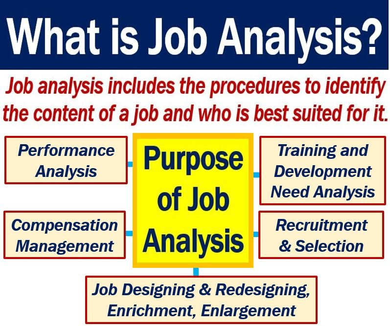 Job Analysis  Definition And Meaning  Market Business News