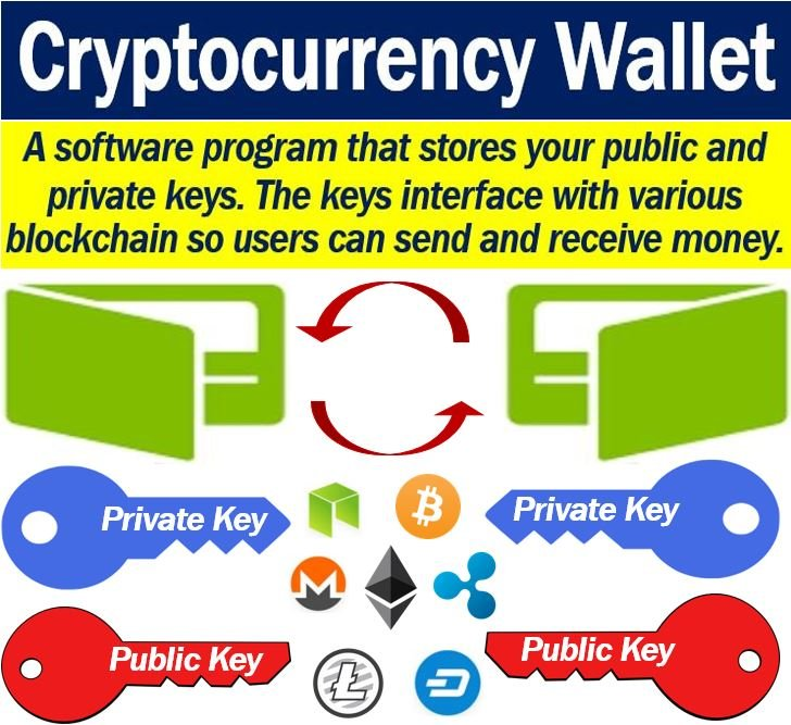 Cryptocurrency wallet - definition and example