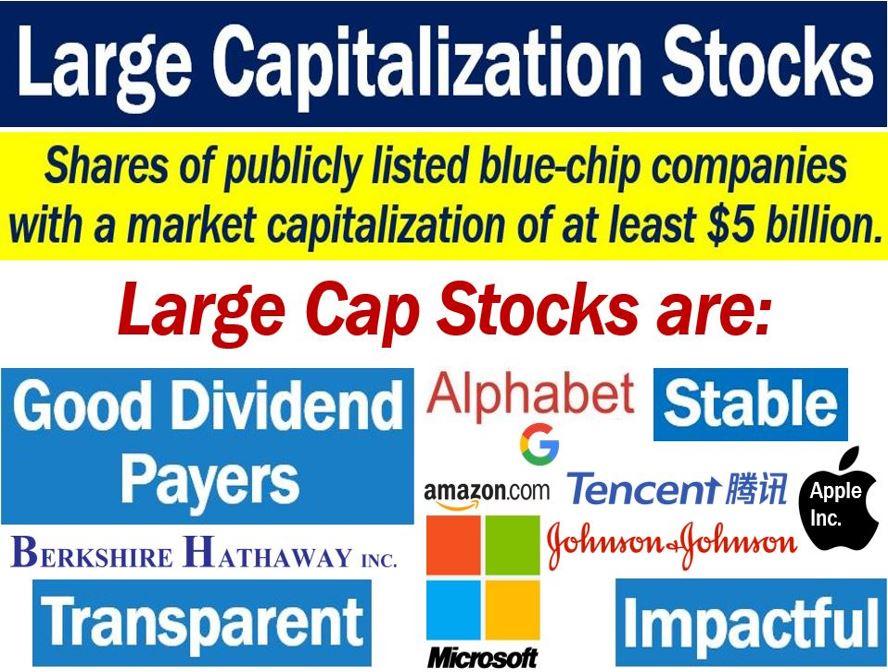 Large Capitalization Stocks