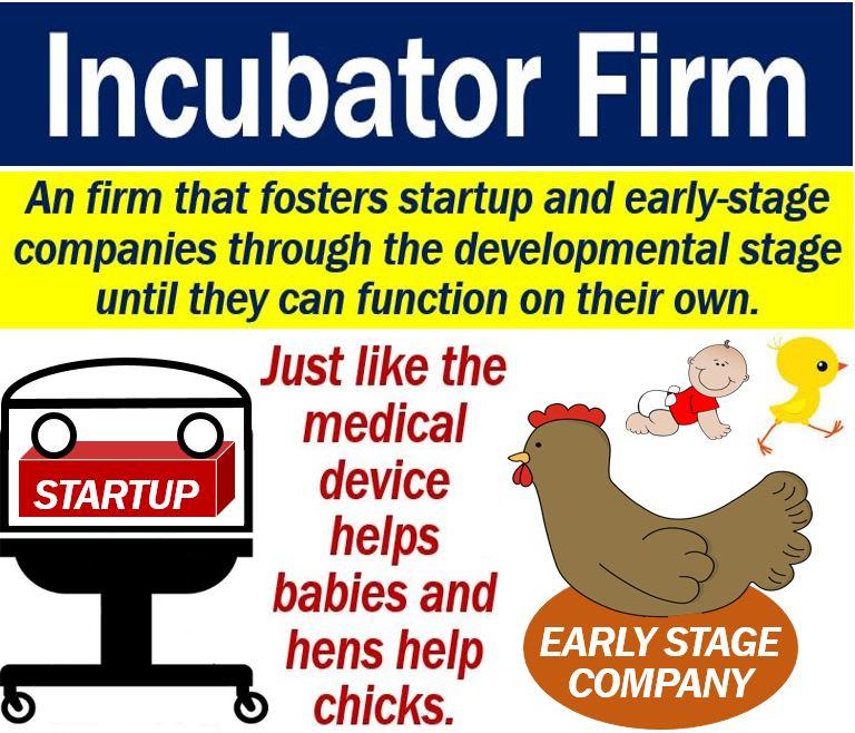 Incubator Firm