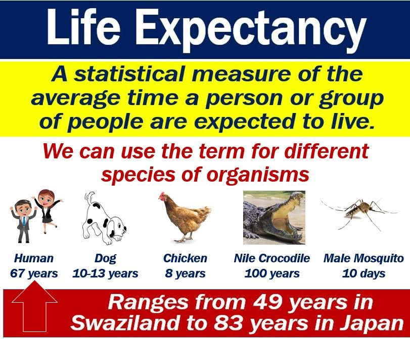 According To Wikipedia: U201cLife Expectancy Is A Statistical Measure Of The  Average Time An Organism Is Expected To Live, Based On The Year Of Its  Birth, ...