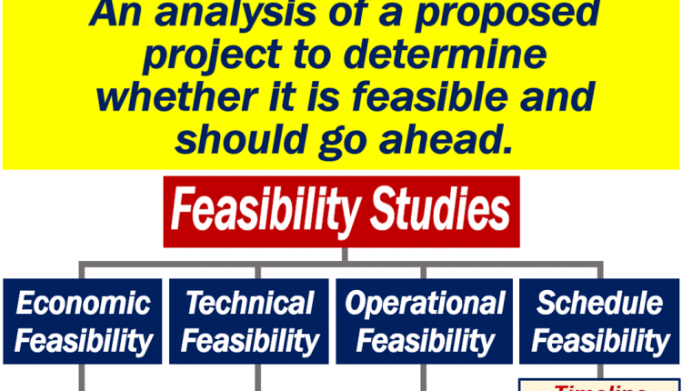 definition of feasibility study and business plan