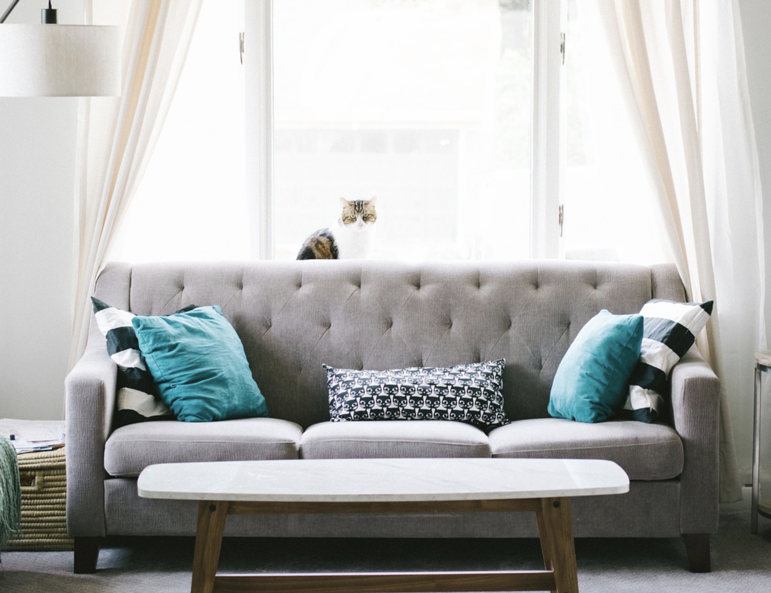 Ultimate Guide to Customized Designer Sofas - Market ...